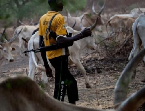 Nigeria, Centrafrica, Kivu: non c'è Pace e non c'è Giustizia