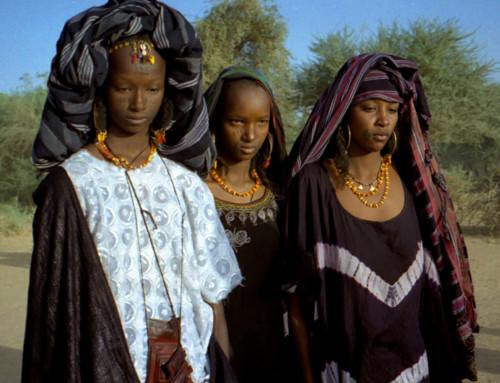 Niger, un complesso mosaico di etnie