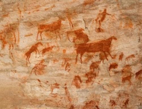 A nord di Città del Capo, tra pitture rupestri e vallate fiorite