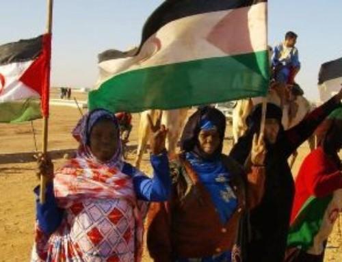 Sahrawi, un popolo sahariano senza terra, dimenticato da 40 anni