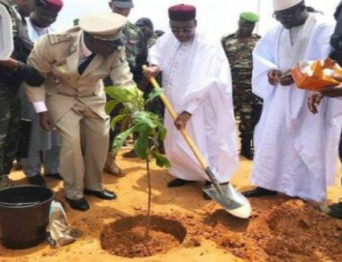 L' albero dell'indipendenza di sabbia. La lettera di p. Mauro dal Niger