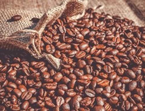 Dalla Sierra Leone un caffè 'resistente' ai cambiamenti climatici