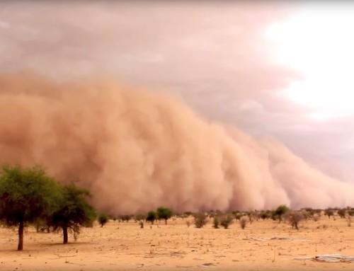 L'ultima utopia arriva dal Sahel e non da Davos