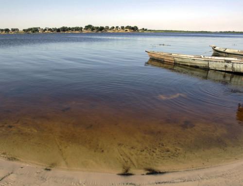 L'avvenire del lago Ciad. Un progetto italiano