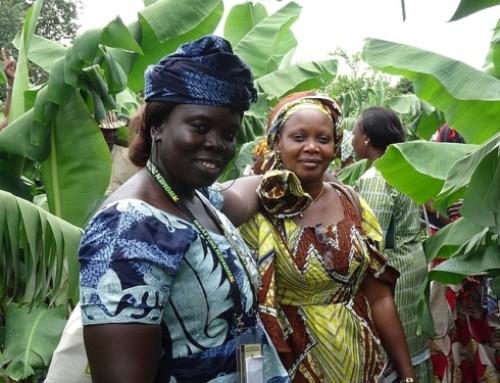 Agro-ecologia: in Africa si pratica già