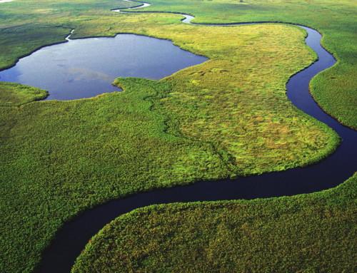 Il Delta dell'Okavango, un paradiso da proteggere